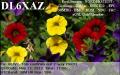 dl6xaz_20120517_1706_30m_psk31