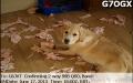 g7ogx_20130617_1800_6m_ssb