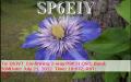 sp6eiy_20120721_1807_30m_psk31
